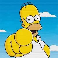 Homer Simpson Você Mesmo